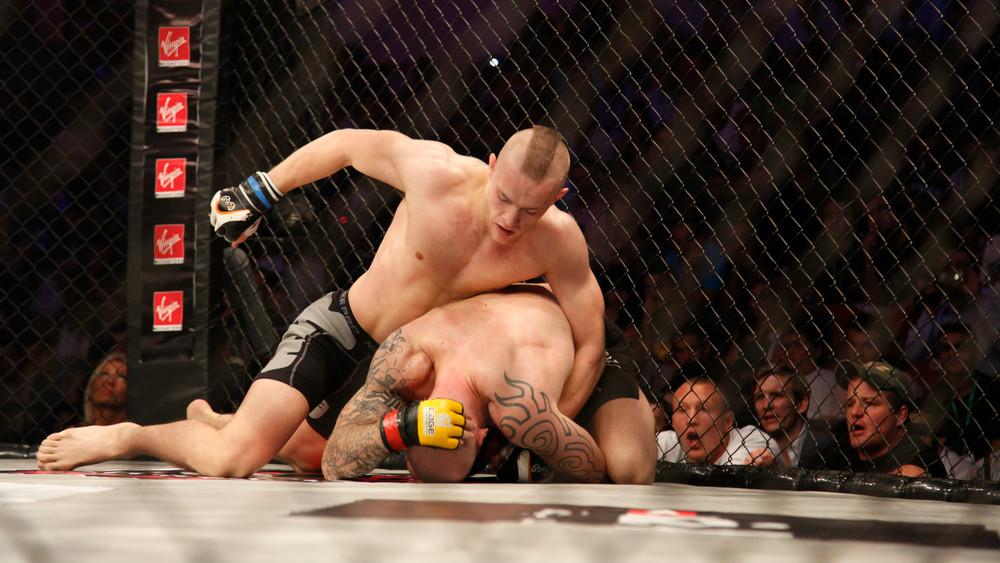 Betting Business UFC205 Sportsbet.io