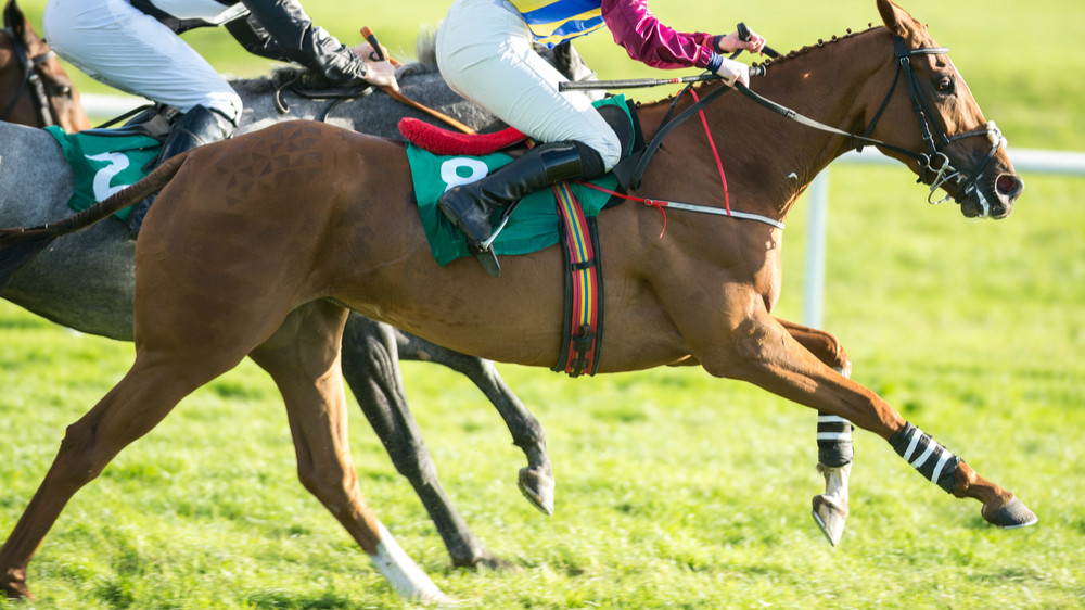 Betting Business Racing Post