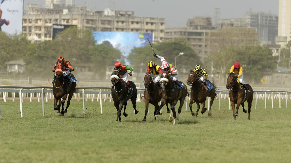 Betting Business Indian Horse Racing
