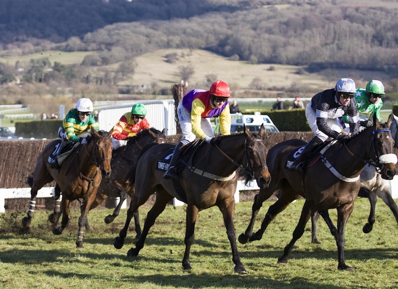 Betting Business - Cheltenham Festival Grosvenor Ahead successful case
