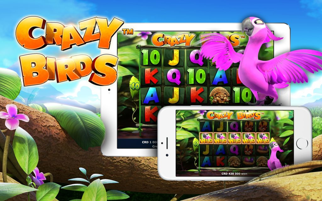Greentube's new slot Crazy Birds to launch