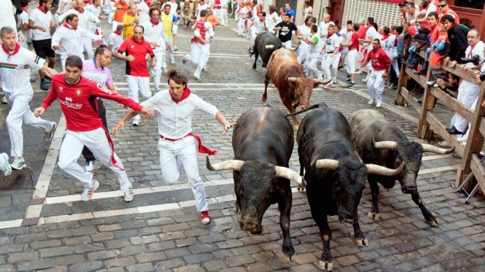 Spain bull run