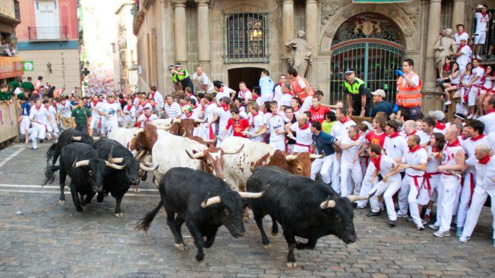 Pamploa bull run