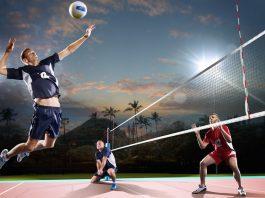 Sportradar, global, volleyball, sport betting