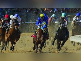 SBTech and Churchill Downs white bet in Arkansas