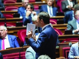 French senate votes on turnover tax