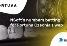 NSoft Fortuna integration