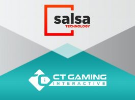 Salsa Technolgy CT Gaming Interactive