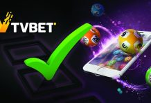 TVBET live games provider tips product launch on sportsbooks
