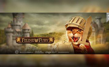 Feline Fury Playn GO